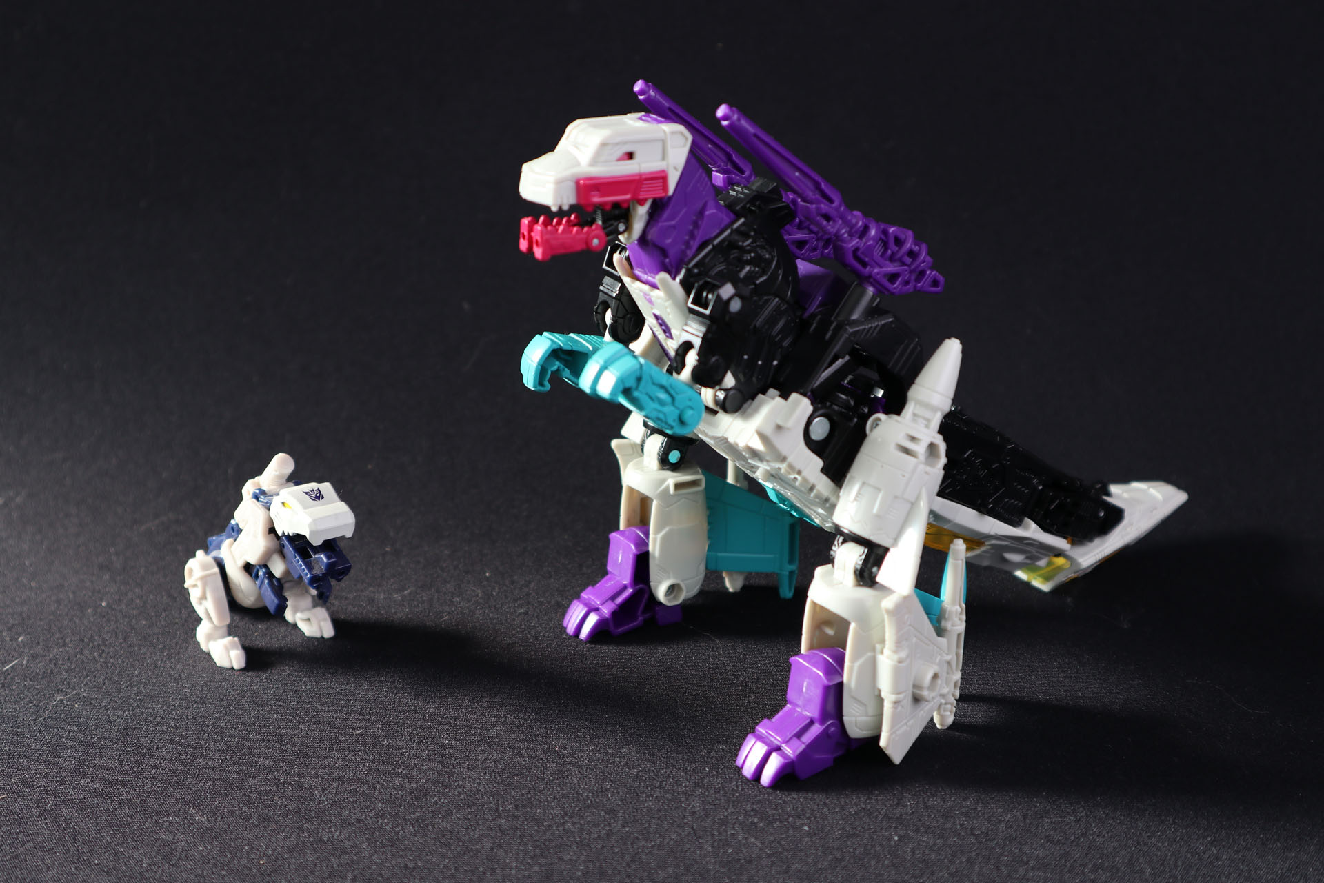 TF_haul_sept2020_05